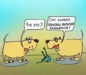 самый угарный анекдот про собак