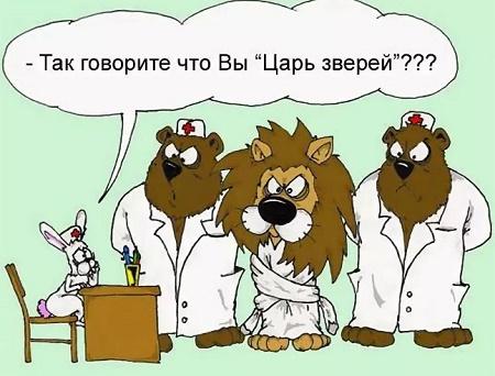 смешной анекдот про льва