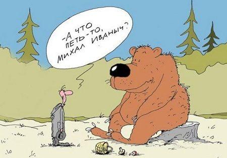 смешной анекдот про медведя