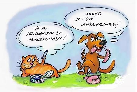 анекдот про кошек и собак