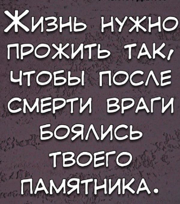 анекдоты о жизни асв