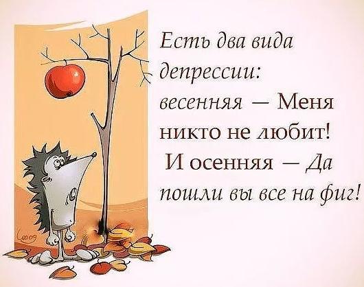 смешной анекдот про осень
